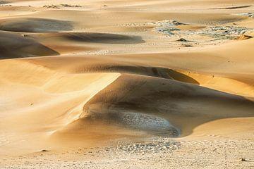 Dünen der Namib von Britta Kärcher