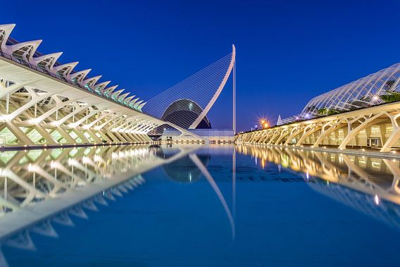 City of Arts and Sciences, Valencia - 2