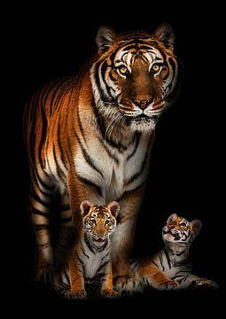 Een tijger met haar twee welpen van Bert Hooijer