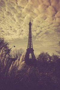 Parijs Eiffeltoren van