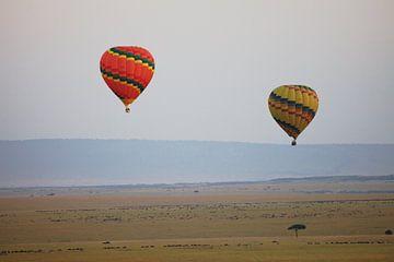 Ballonnen boven Masai Mara, Kenia van Peter van der Horst
