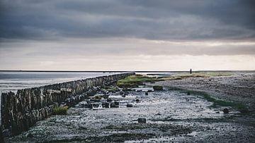 La mer des Wadden - 3 sur Rob van der Pijll