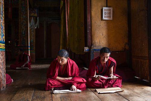 Jonge monniken in gebed ruimte in Dzong van Trongsa Bhutan. Wout Kok One2expose van