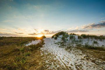 Pittoreske Baltische Zee duinen van Ursula Reins