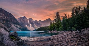Treibholz im Bergsee von Dennis Werkman