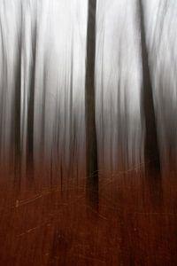 bewogen bomen i/iii van joas wilzing