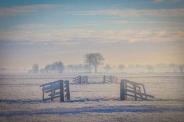 Niederländische Polderlandschaft von Original Mostert Photography