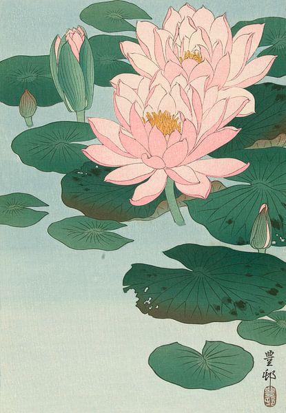 Flowering Water Lily, Ohara Koson van 1000 Schilderijen