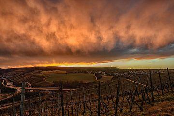 dramatic sunset in the vineyards van Heinz Grates