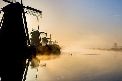 Taking flight at Kinderdijk van