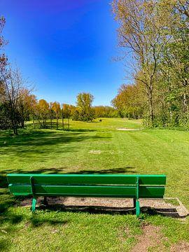 Das Grün von GoingDutch
