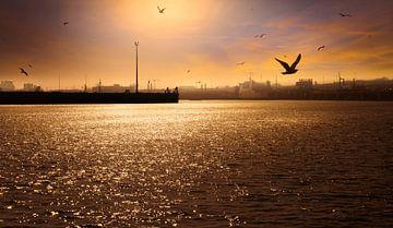 0777 Abend im Hafen von Adrien Hendrickx