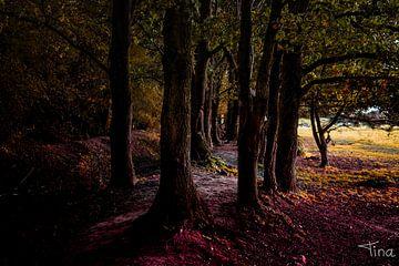 De dansende bomen op de kleurende bladeren van Tina Linssen
