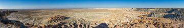 Yangykala Canyon Panorama van Joost Potma