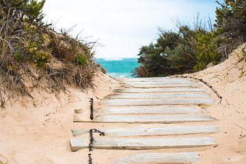 Weg naar het strand van Robert Styppa