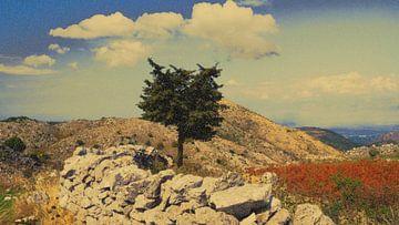 Zonnige dag op Corfu van I Kroft