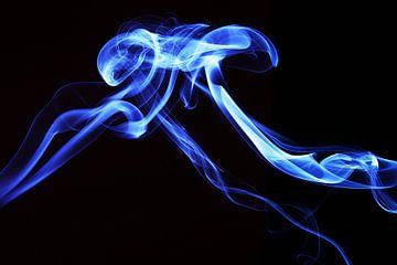 Rook vorm van Elise van den Ouden