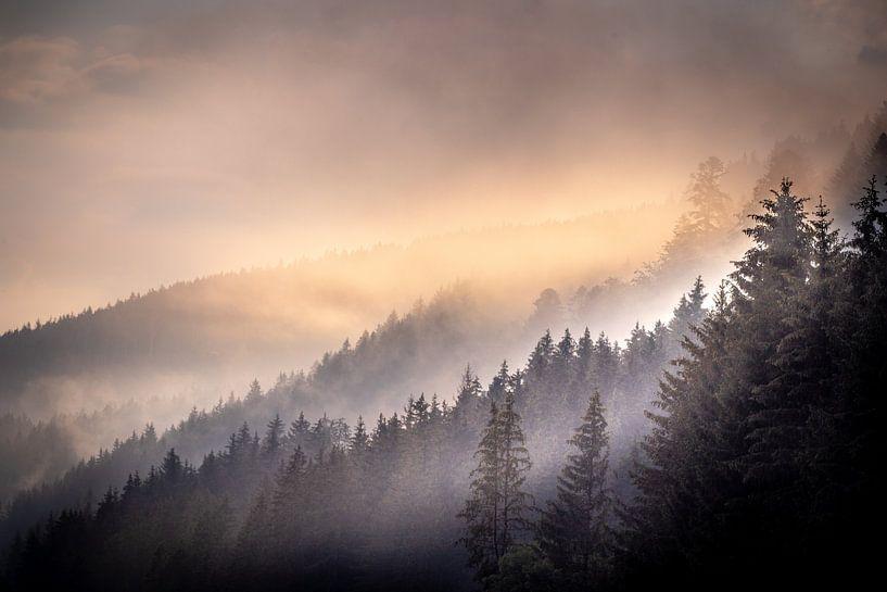 Ochtenmist am Titisee im Schwarzwald van Peschen Photography