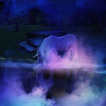 Eenhoorn op het lake van Karin Schwarzgruber