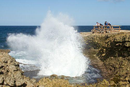 Curacao, ruige kust no. 11