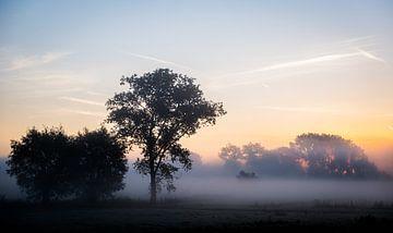 Mistige zonsopgang van Niki Moens