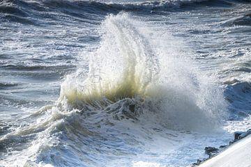 oceanische kracht van Daniela Tchinitchian Photography