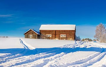 Koude zonnige winterdag in Zweden van
