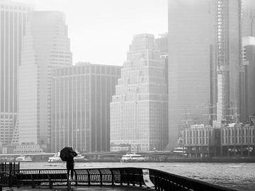 Kijkend naar Manhattan van Rutger van Loo