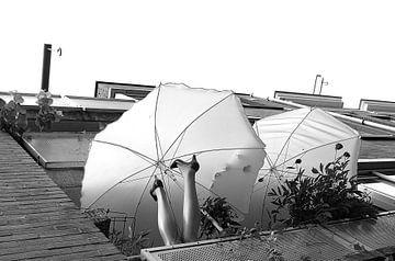 Amsterdamse paraplu van Marianna Pobedimova