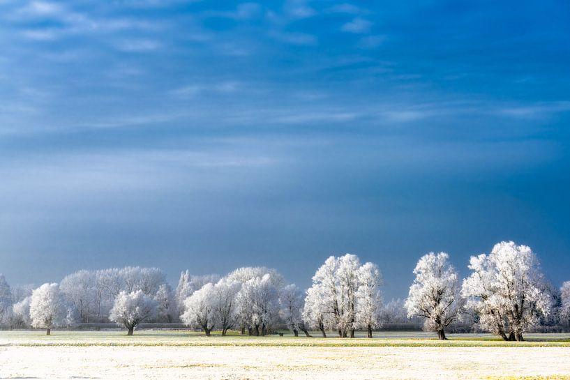 Magical Winter van Maarten Mensink