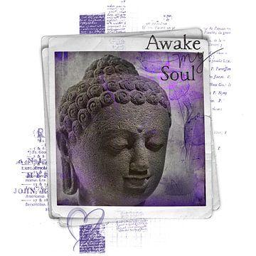 Awake my soul - boeddha van Studio Papilio