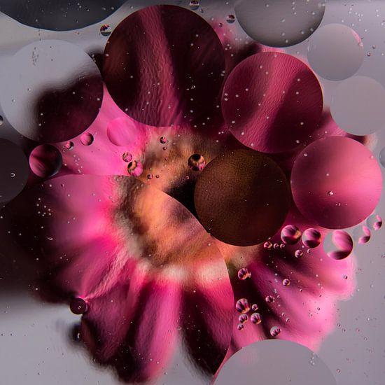 Roze Gerbera onder water en oliedruppels