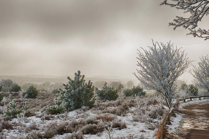 Winter in Salland van Alied Kreijkes-van De Belt