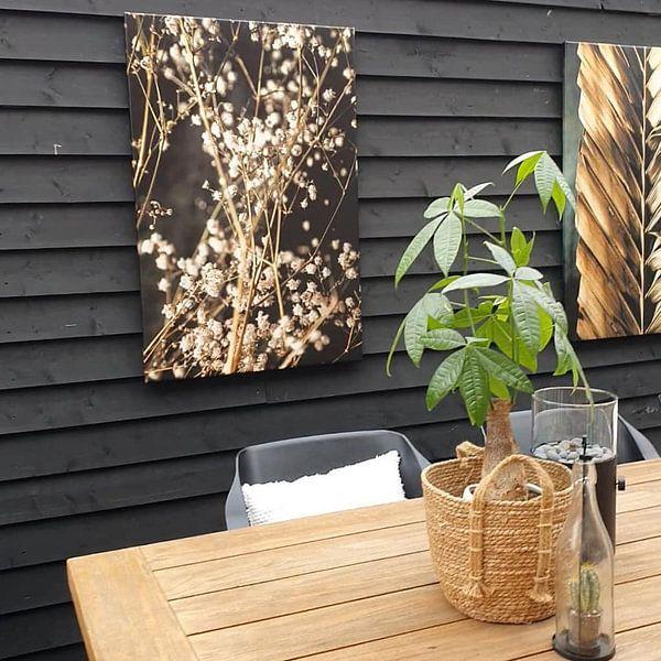 Kundenfoto: Gypsophila von Melanie Schat, auf leinwand