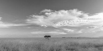 Zwart/Wit Landschap Tanzania van Gonda van Wijk