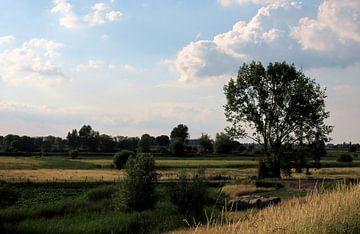 Plaines inondables de Vianen sur Elize Aurik