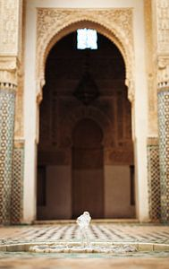 Madrassa in Marokko von Louise van Gend