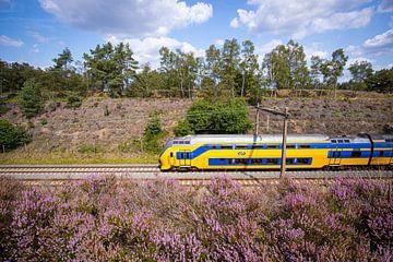 Un train à deux étages le long de la lande à la gare d'Assel sur Stefan Verkerk