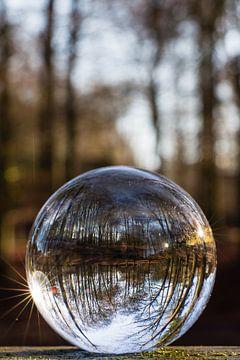 Door een glazen bal #2 van Robert Wiggers