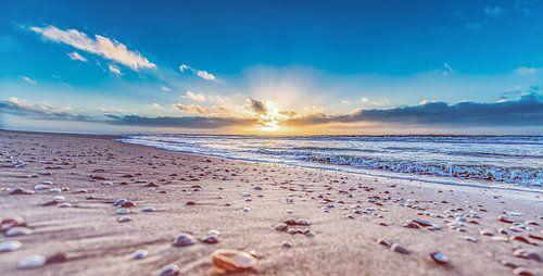 Schelpen genietend van de zonsondergang van Alex Hiemstra