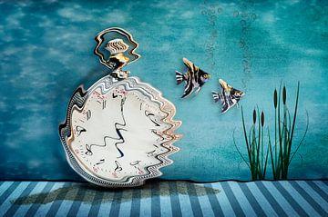 Zwemmend door de tijd van Fred en Roos van Maurik