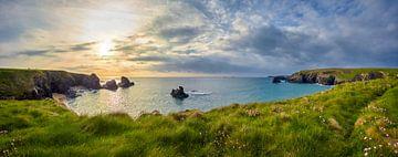 Cornwall Groene Kust van Silvio Schoisswohl