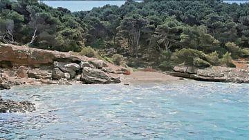 Een Bos aan het Strand - Kust Landschap - Porto Conte - Sardinië