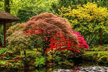Japanse tuin van Henny Buis