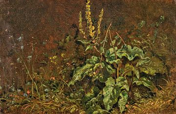 Vaste planten (toorts en grassen), CARL SPITZWEG, rond 1845-1850 van Atelier Liesjes