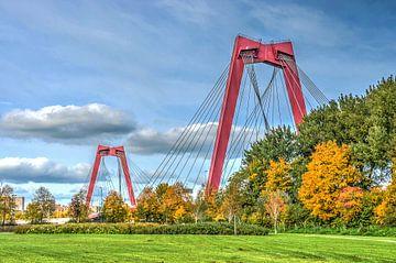 Rotterdam: Willemsbrug en Noordereiland van