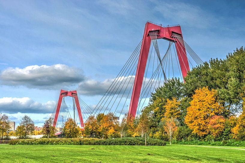 Rotterdam: Willemsbrug en Noordereiland van Frans Blok