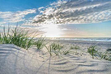 Abendsonne am Strand von Jolanda Bosselaar