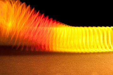 Gekleurde veer von Ruud Ravensbergen