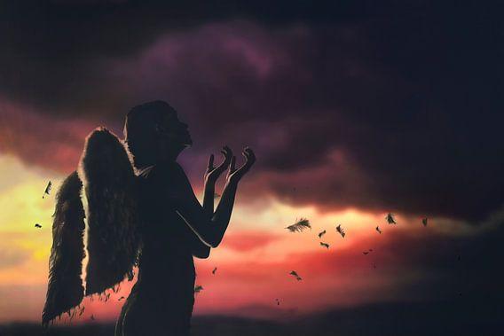 Een gevallen engel